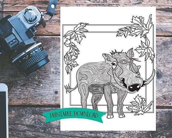 Coloring Page -Warthog with Symbolism // INSTANT DOWNLOAD // Manifestation and Meditation Colouring Page