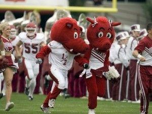 teehee woopig: Razorback Country, Razorback Mascots, Razorback Fans, Things Razorback, Razorbacks Mascot, Callie Phillips, Arkansas Razorbacks ️