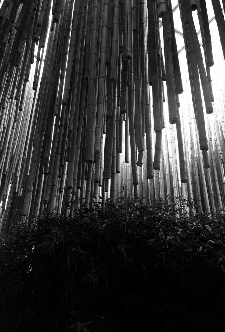 #wood #art #architecture #black