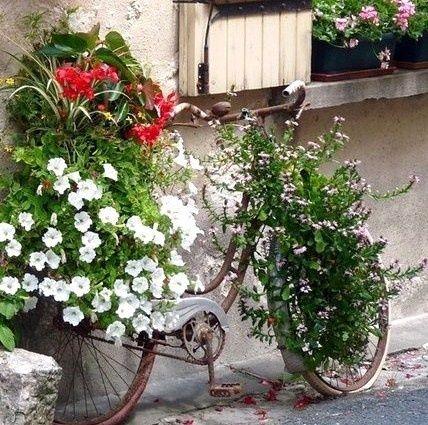 Les v los fleuris au jardin d co plantes pinterest le v lo fleuri et le jardin for Decoration jardin velo