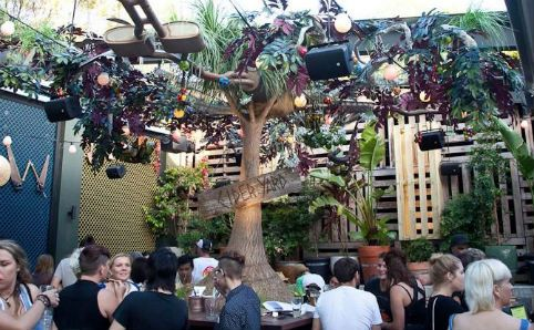 Newtown Hotel Cider Fair - Newtown Hotel - Bars & Pubs - Time Out Sydney