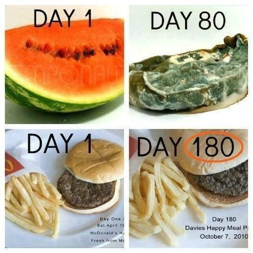 Comparison Of What Real Food Looks Like After 80 Days Vs