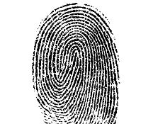 Cronaca: Dal #2017 a tutti gli stranieri che entrano in Russia saranno prese le impronte digitali (link: http://ift.tt/2gl707a )