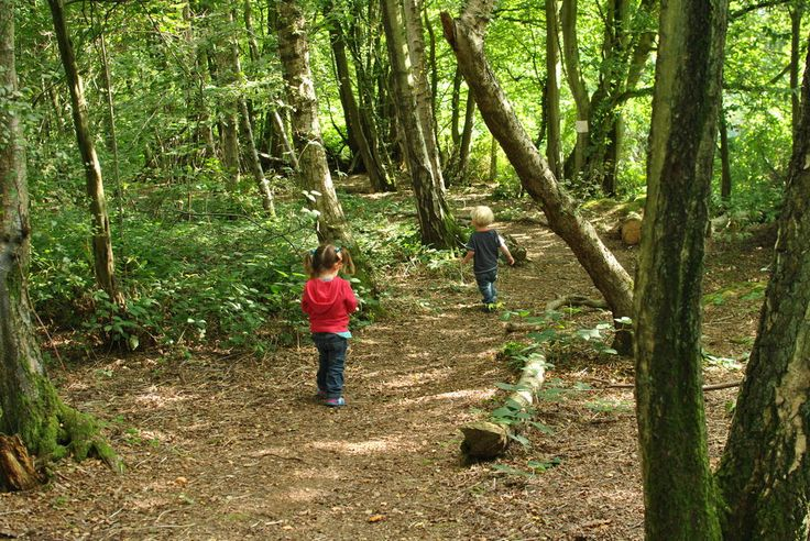 Eco camp uk at wild boar wood south east england west sussex large