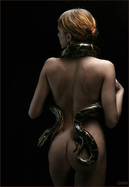 Eve and the Snake