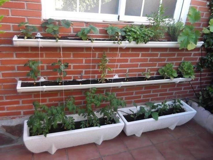 9 mejores im genes sobre huertos y patios en pinterest plantas y jard n verduras de jard n y - Pequeno huerto en casa ...
