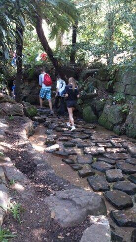 Walking on stepping stones im Kirstenbosch