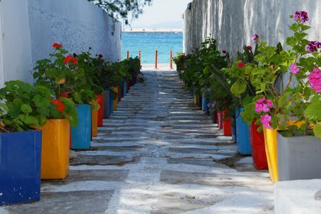 Entrance by the sea Photo by Phil Iossifidis -- National Geographic Your Shot