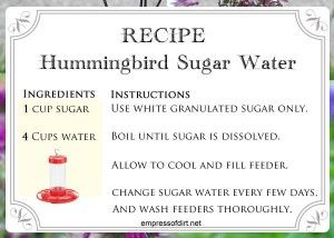 Recipe for making sugar water for hummingbirds - see full instructions for safest method