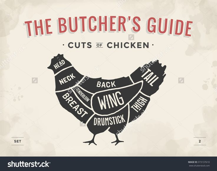 Húsdarab Set.  Poster Butcher diagram és Scheme - csirke.  Vintage Nyomdai Kézzel rajzolt.  Vektor illusztráció - 373137610: Shutterstock