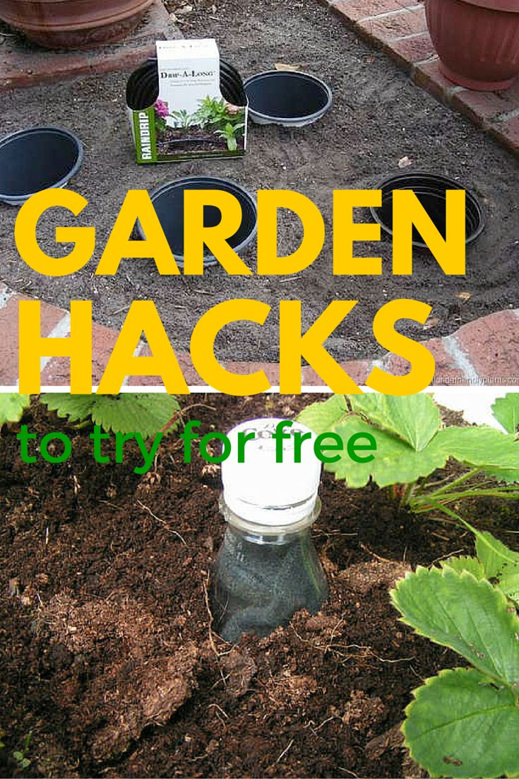 These ideas are so clever. If you need a little extra help in your garden, these hacks will make your life easier. Plus they are cheap or free to do.
