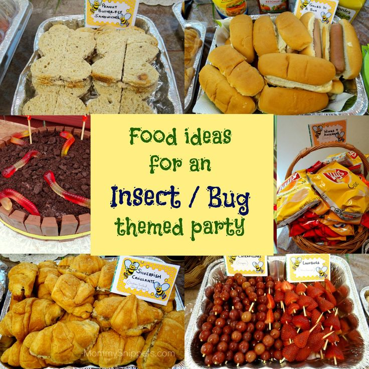 Buggy Treats Looking For Boys Party Ideas Check Out These Fun Food An Insect Or Bug Themed