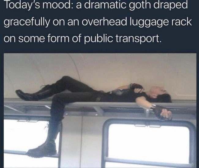 Funny Memes Hilarious Inappropriate Dark Sense Of Humor Dark Humour Memes Good Night Meme