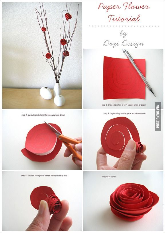 Cheaper substitute for roses to your girlfriend