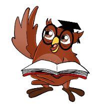 language and literature owl