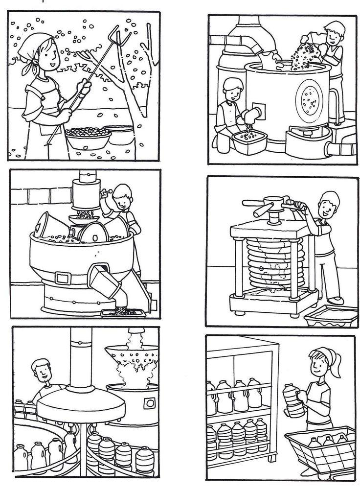 Ciclo do azeite
