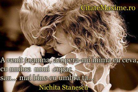 """""""A venit toamna, acopera-mi inima cu ceva, cu umbra unui copac sau... mai bine cu umbra ta..."""" #CitatImagine de Nichita Stanescu Iti place a..."""
