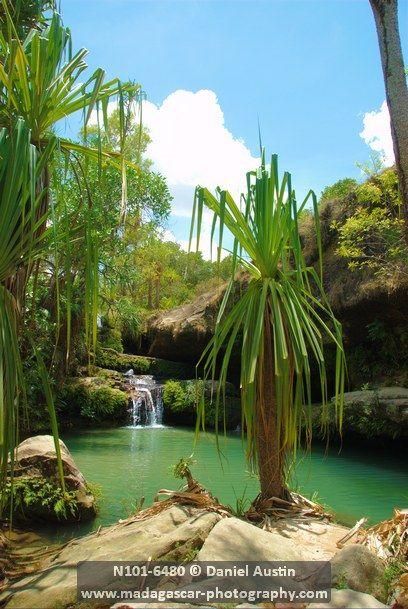 Natural swimming pool oasis, Isalo National Park, Madagascar | David Austin, Madagascar Photography