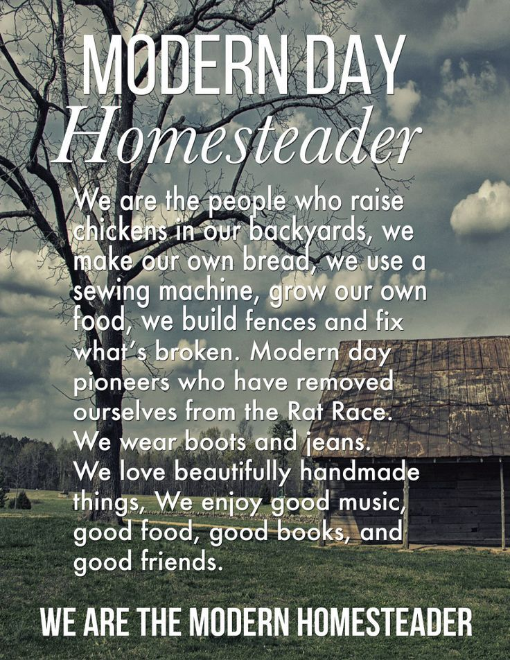 You are the modern homesteader whether you have 1000 a for Modern homesteading