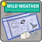 This Wild Weather Research Project includes the templates to create an accordion style research report on five different extreme weather storms: to...