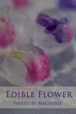 お花を氷に閉じ込めて*