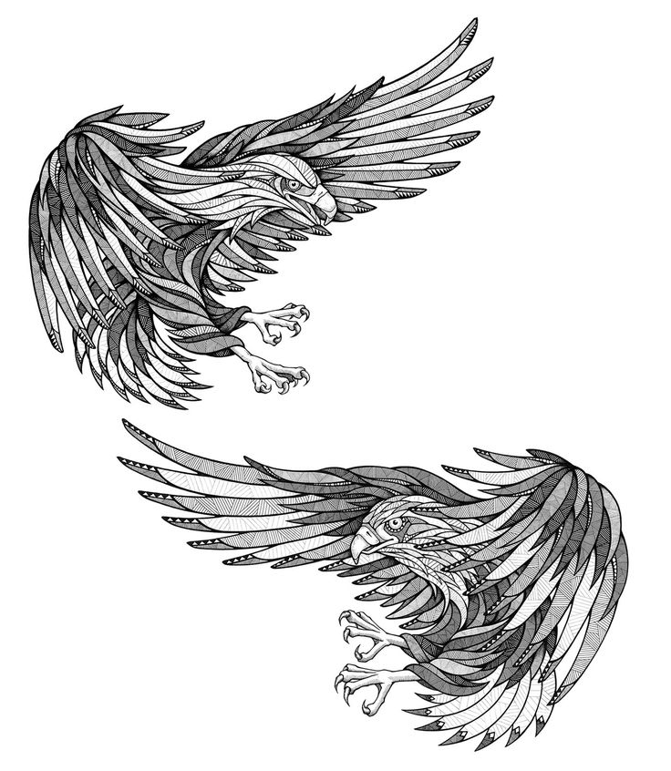 правило, картинки эскизы тату орла багира