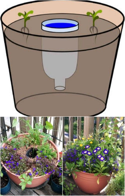 Plastic bottle water reservoir. - 100 Expert #Gardening #Tips, Ideas and Projects that Every Gardener Should Know