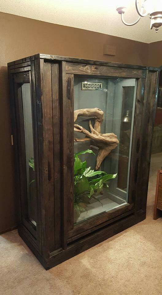 Awesome enclosure                                                       …