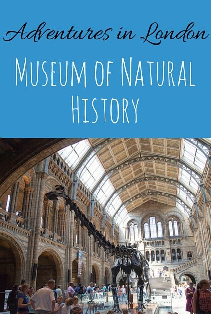 museum of natural history london via