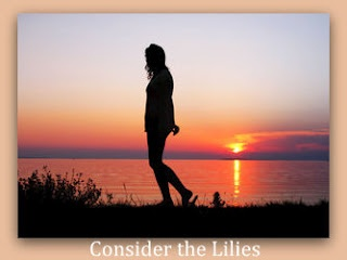 Do you sometimes feel your life is a dead-end? - Have you given up hope, or just lack having a friend?... http://considertheliliespoetry.blogspot.com/2012/06/live-your-life.html# #poem #poetry #destiny #dreamLife