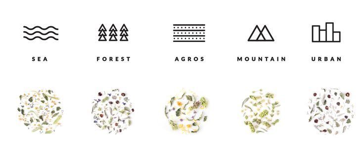rhoeco on Packaging of the World - Creative Package Design Gallery