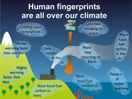 Global warming: Summary of observational evidence that human carbon dioxide emissions are causing the climate to warm