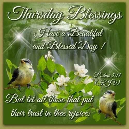 62 best thursday blessings images on pinterest happy thursday thursday blessings have a beautiful and blessed day but let all those who put their trust in thee rejoice m4hsunfo