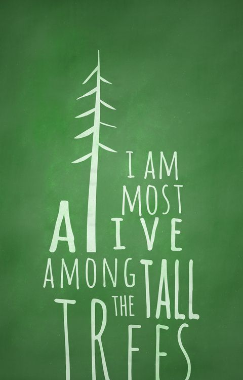 """I am most alive among the tall trees."""