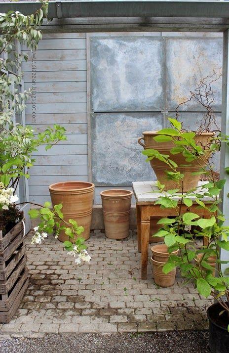 Piazzan: Växthus på Zetas finsmakarens trädgård #piazzanblogg  #zetasträdgård  #Växthus #hortensia  #garden