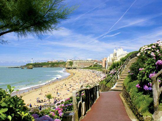 Pays Basque - Biarritz la colline aux hortensias au dessus de la Grande Plage