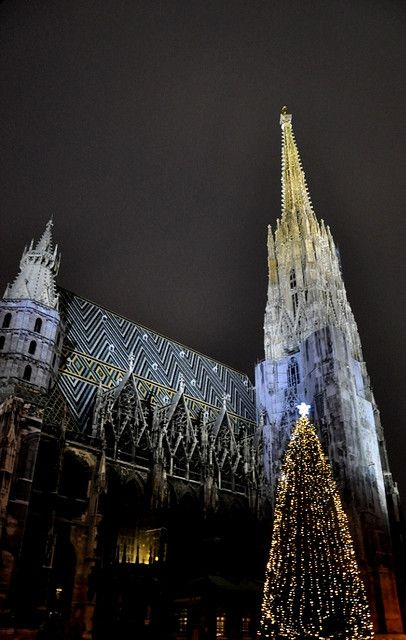 Christmas in St. Stephan Cathedral, Vienna, Austria