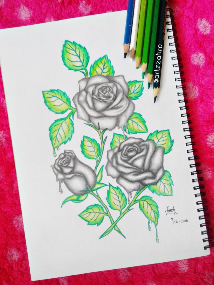Roses drawing done by me ❤️‍ Follow my instagram to see more drawings…