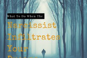 How The Narcissist Projects His/Her Behaviour onto You  |  Narcissism Recovery and Relationships Blog  #Narcissism #relationship