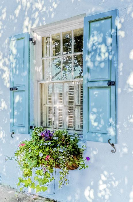window box + blue shutters | architectural details + container gardening