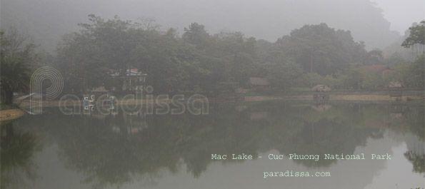 Circuit d'observation des oiseaux au parc national Cuc Phuong au Vietnam