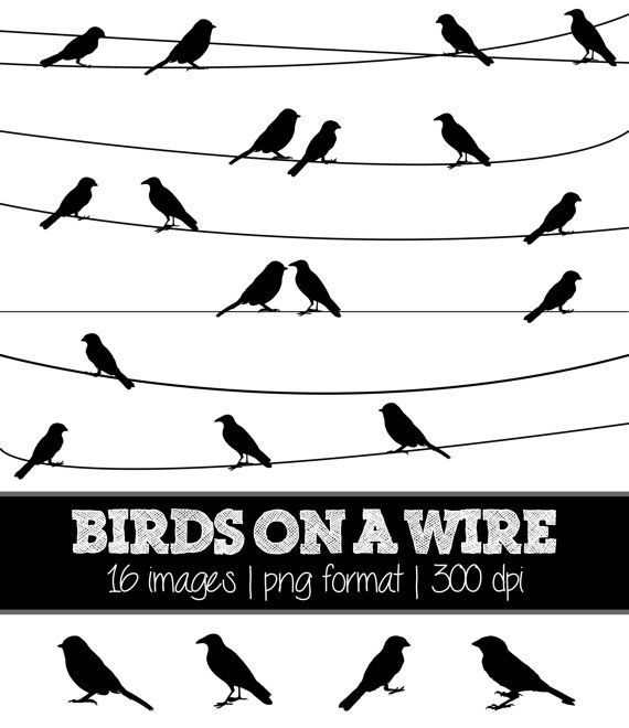 Bird on a Wire (black) Silhouettes // Nature Birds Silhouette // Clip Art Clipart // Birds on a wire Silhouettes