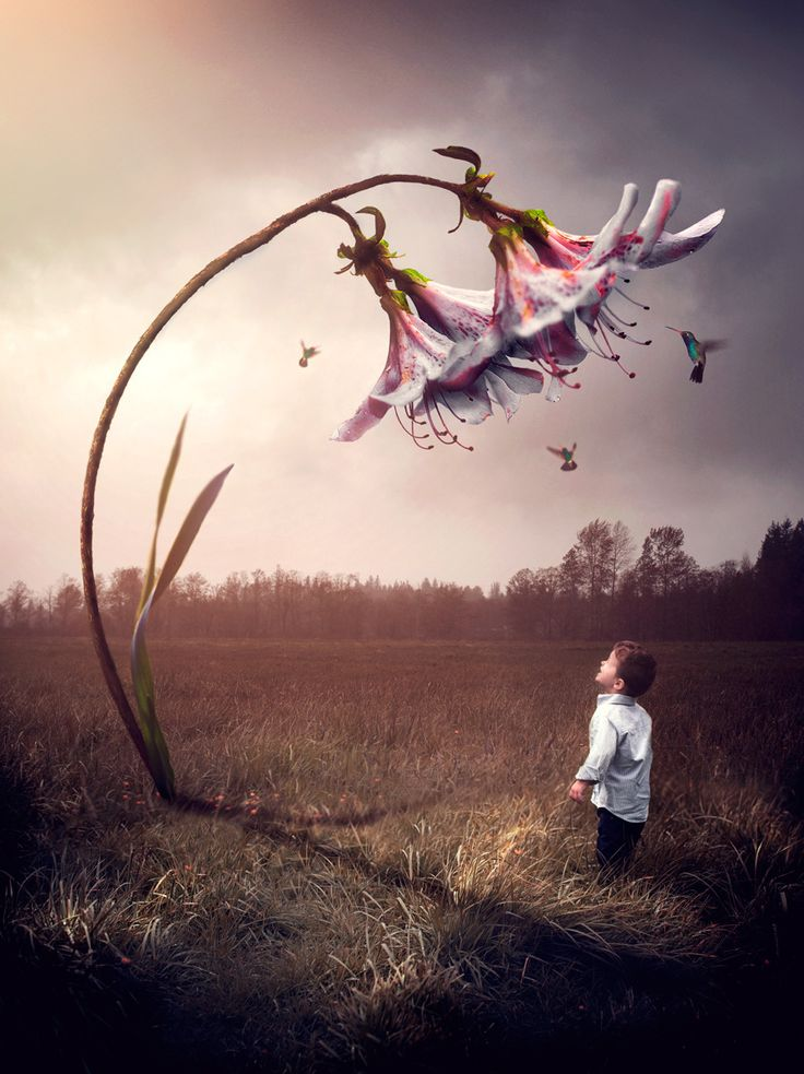Best Surreal Photo Digital Art Images On Pinterest - Photographer uses photoshop to create surreal dreamy composite images