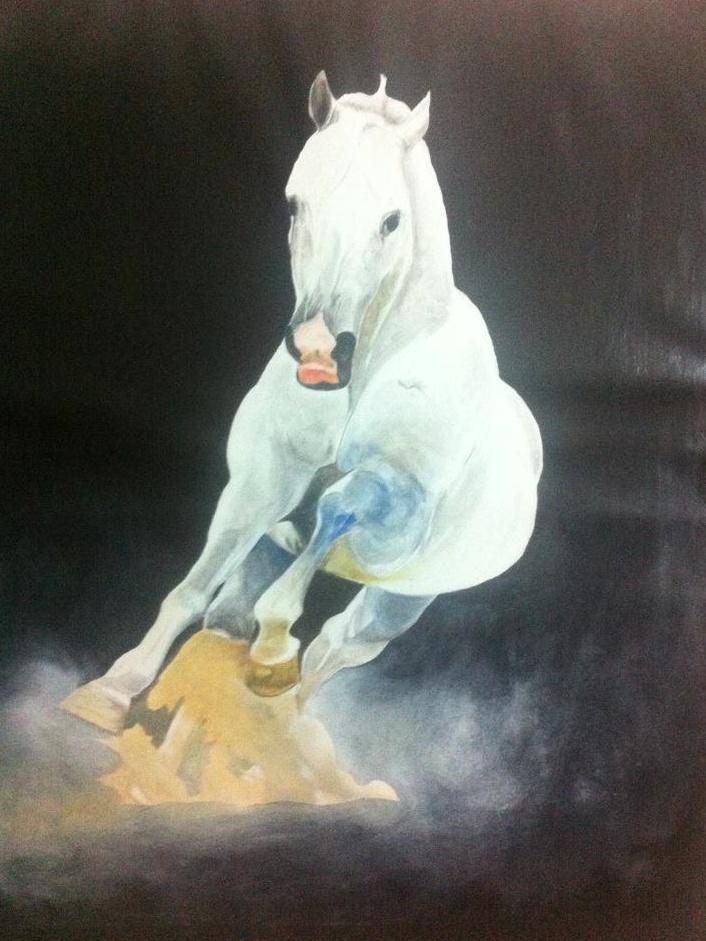 cavallo -horse- oil on canvas 120x110 2011