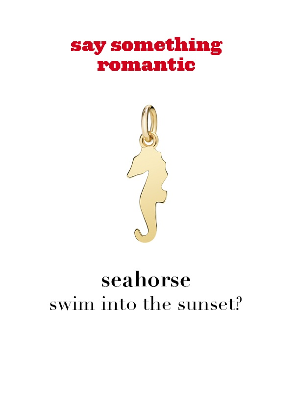 Dodo charm: seahorse - swim into the sunset?