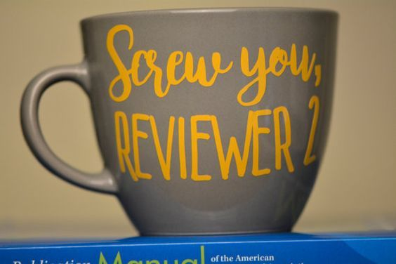 Screw You Reviewer 2 Mug // Academic Humor Mug by ElevateAndFly