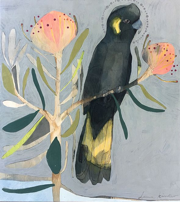 Black Cockatoo and Protea I original painting pencil and acrylic on timber 40cm x 45cm  one of a series of four $495