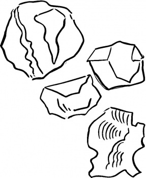 the rock coloring pages - 25 best rocks shells for mike images on pinterest