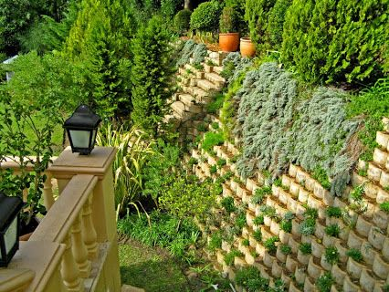 Plants reclaim this Terraforce wall
