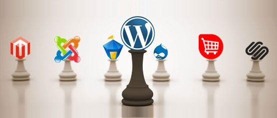 Why WordPress Has Edge over Other CMS